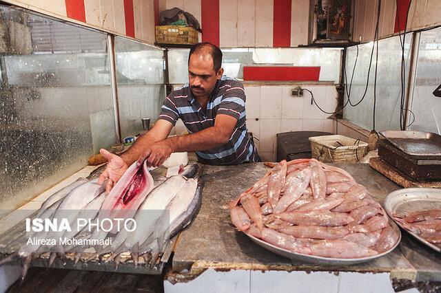 عرضه مناسب ماهی فشار بر بازار گوشت را کاهش می دهد