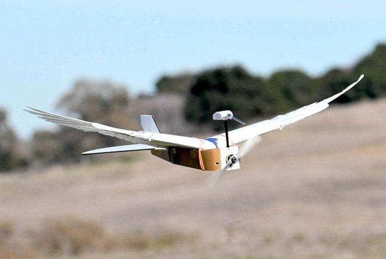 دانشمندان روباتی ساختند که دقیقا مانند یک کبوتر واقعی پر و بال می زند
